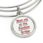 backrainbowbridgebangle